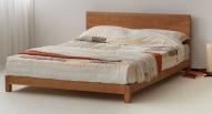 Sonora koka gulta